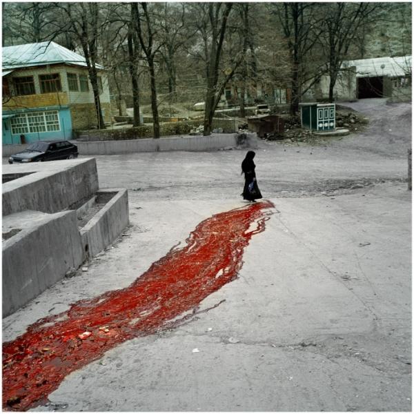 Rote Distel - Daghestan 2009