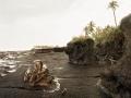 Erosion after logging of Mangroves, 2006