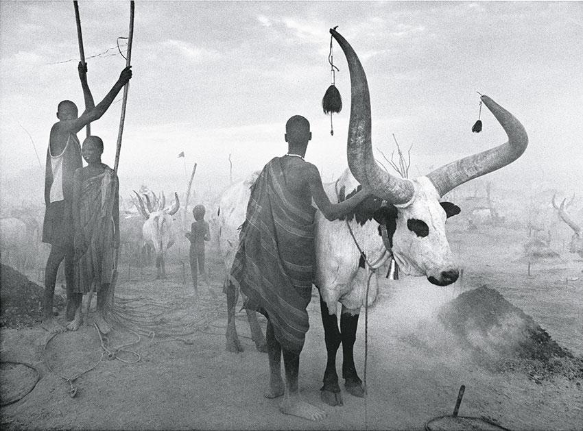 aus seinem Africa-Band | Photographs by Sebastião SALGADO / Amazonas images