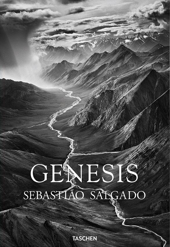 fo_salgado_genesis-1
