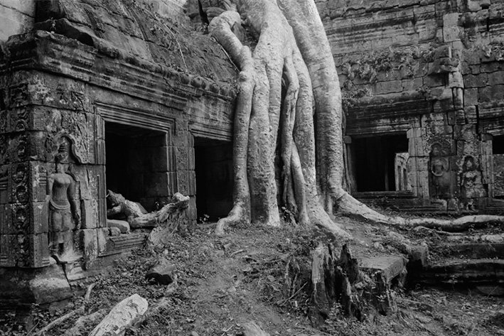 Ta Prohm KB 12