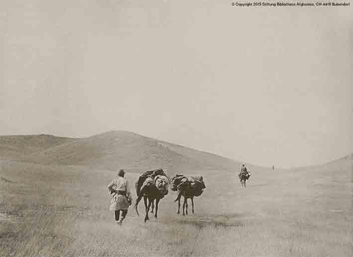 Blick auf die weit auseinander gezogene Karawane in einer hügeligen Steppenlandschaft. Diese Aufnahme ist mit Rätseln behaftet, nicht zuletzt weil die in der Originallegende angegebenen Lokalitäten im Gebiet der Reiseroute nicht auszumachen sind. Darüber hinaus ist ungewiss, ob die Aufnahme in der Zeit der Diplomatischen Mission von Hentigs (1915) oder während einer früheren Forschungsreise Niedermayers (ca. 1913) entstanden ist. Niedermayer schildert in seinen Aufzeichnungen zur Mission im Jahre 1915 eine dem Bild ähnliche Landschaft (s.u.). | © Copyright: Stiftung Bibliotheca Afghanica, CH-4416 Bubendorf